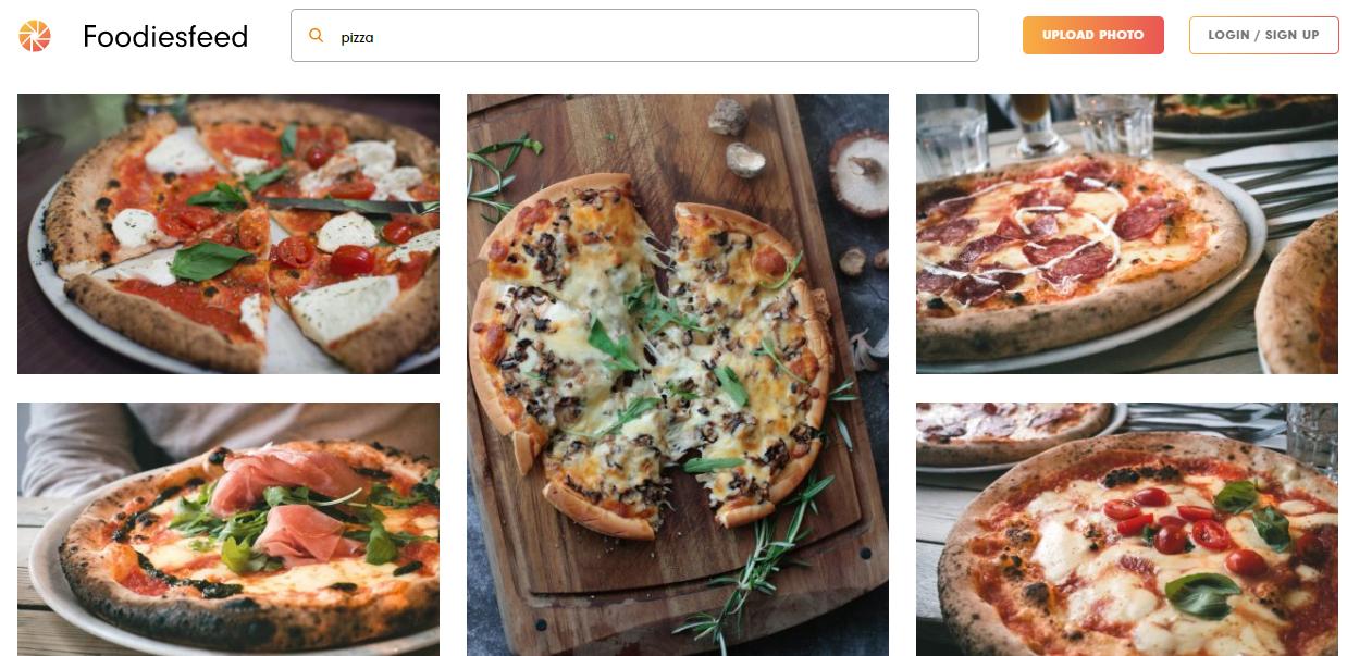 Foodies feed-food blogging-recurpost-social media scheduler